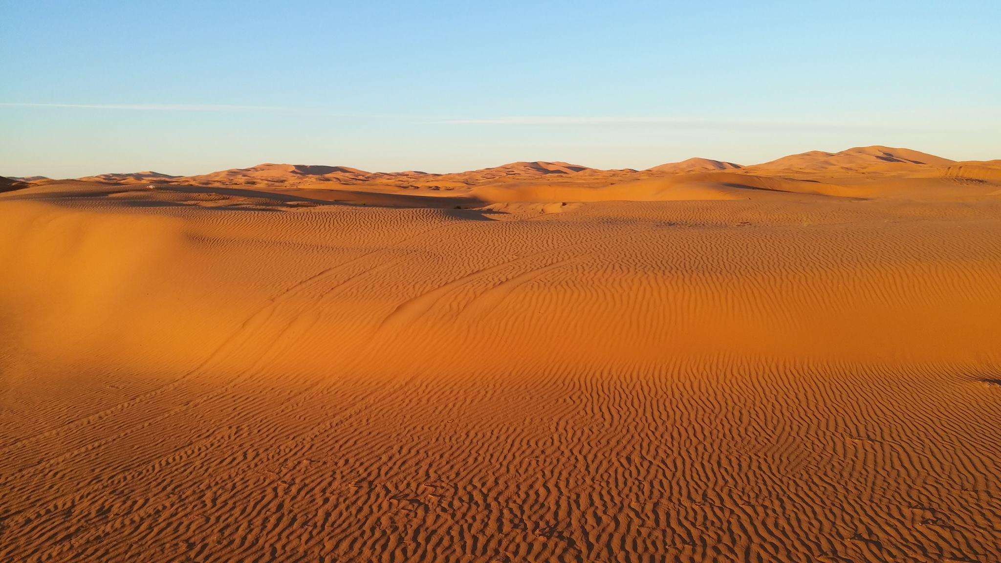 Desert - offroad