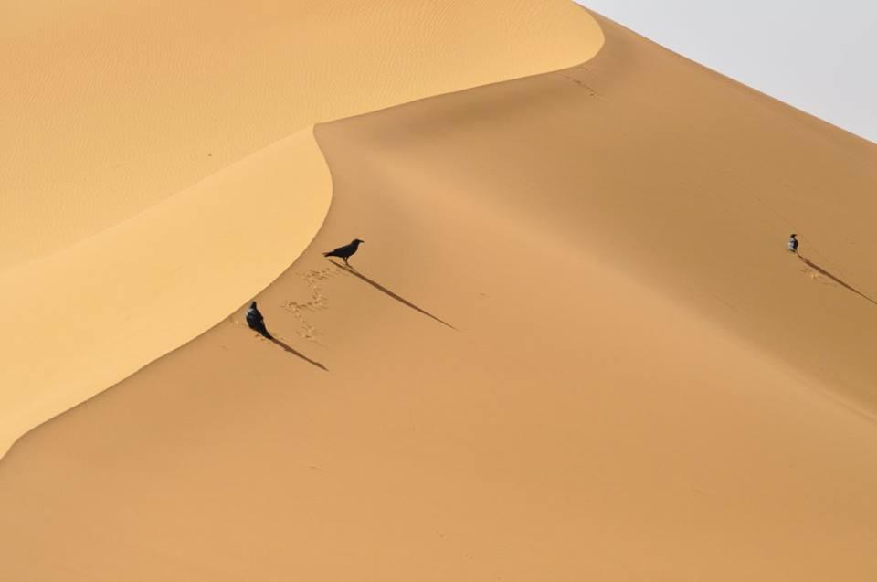 Ouarzazate - Marrocos